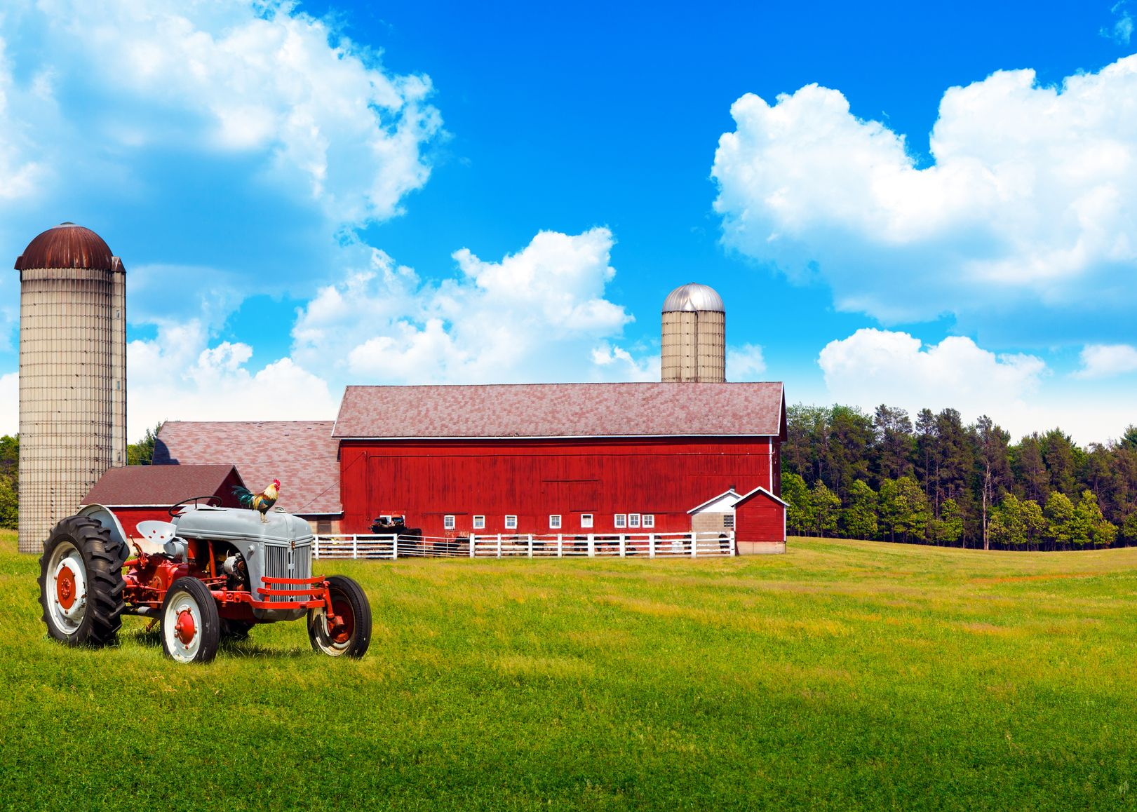 Titusville Farm & Ranch Insurance